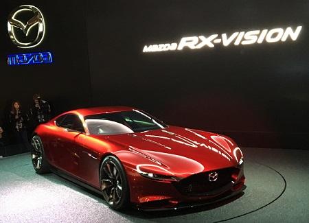 RX-VISION.JPG